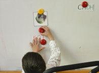 Особые дети: подготовка к школе в ЦЛП